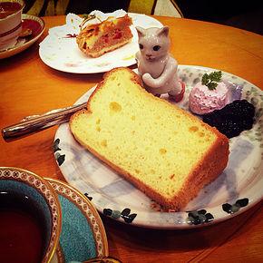 猫が好き!!の写真